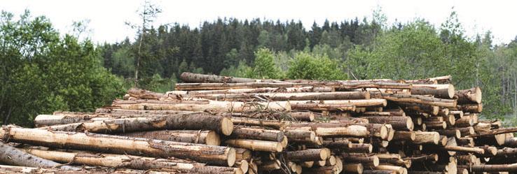 Teknos, průmyslové dřevo